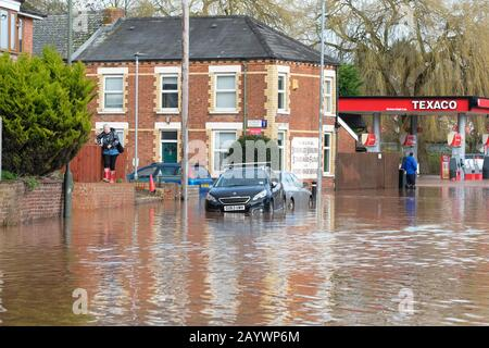 Hereford, Herefordshire, UK - Monday 17th February 2020 - A women walks along a wall as she makes her way carefully through the flooded Ledbury Road area of the city. Photo Steven May / Alamy Live News - Stock Photo