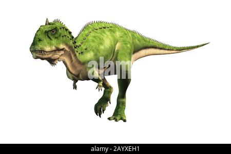 Majungasaurus was a carnivorous theropod dinosaur that lived in Cretaceous era Madagascar. A cousin species to carnotaurus, it had a horn on its head. - Stock Photo