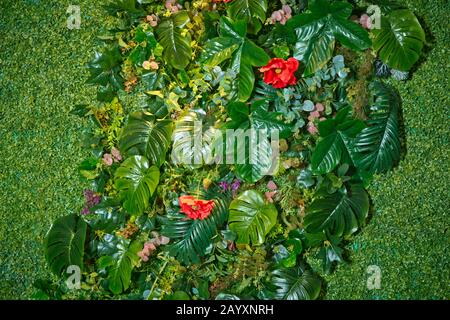 artificial green plant wall . Variety of artificial plant in vertical garden, Natural background . Beautiful artificial ornament plants texture and - Stock Photo