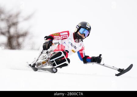 Ueda, Nagano, Japan. 14th Feb, 2020. Yoshiko Tanaka (JPN), February 14, 2020 - Alpine Skiing : Women's Giant Slalom Sitting at Sugadaira Pine Beak during 2020 World Para Alpine Skiing Asia Cup in Ueda, Nagano, Japan. Credit: SportsPressJP/AFLO/Alamy Live News - Stock Photo