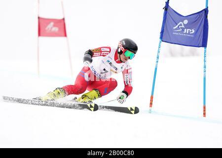 Ueda, Nagano, Japan. 14th Feb, 2020. Kohei Takahashi (JPN), February 14, 2020 - Alpine Skiing : Men's Giant Slalom Standing at Sugadaira Pine Beak during 2020 World Para Alpine Skiing Asia Cup in Ueda, Nagano, Japan. Credit: SportsPressJP/AFLO/Alamy Live News - Stock Photo