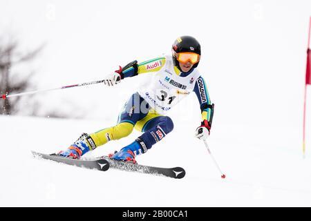 Ueda, Nagano, Japan. 14th Feb, 2020. Yuto Okada (JPN), February 14, 2020 - Alpine Skiing : Men's Giant Slalom Deaf at Sugadaira Pine Beak during 2020 World Para Alpine Skiing Asia Cup in Ueda, Nagano, Japan. Credit: SportsPressJP/AFLO/Alamy Live News - Stock Photo
