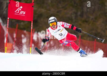 Ueda, Nagano, Japan. 14th Feb, 2020. Hiraku Misawa (JPN), February 14, 2020 - Alpine Skiing : Men's Giant Slalom Standing at Sugadaira Pine Beak during 2020 World Para Alpine Skiing Asia Cup in Ueda, Nagano, Japan. Credit: SportsPressJP/AFLO/Alamy Live News - Stock Photo