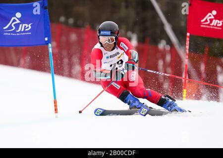 Ueda, Nagano, Japan. 14th Feb, 2020. Kodai Nakamura (JPN), February 14, 2020 - Alpine Skiing : Men's Giant Slalom Deaf at Sugadaira Pine Beak during 2020 World Para Alpine Skiing Asia Cup in Ueda, Nagano, Japan. Credit: SportsPressJP/AFLO/Alamy Live News - Stock Photo