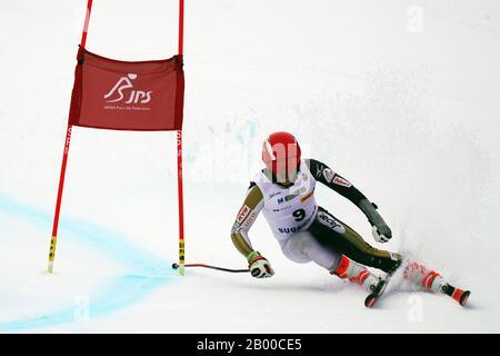 Ueda, Nagano, Japan. 14th Feb, 2020. Gakuta Koike (JPN), February 14, 2020 - Alpine Skiing : Men's Giant Slalom Standing at Sugadaira Pine Beak during 2020 World Para Alpine Skiing Asia Cup in Ueda, Nagano, Japan. Credit: SportsPressJP/AFLO/Alamy Live News - Stock Photo