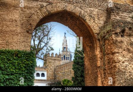 View of the Giralda, the bell tower of Seville Cathedral, from the Royal Alcázars. Andalusia, Spain. Stock Photo