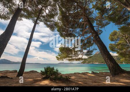 Platja de Formentor beach on the balearic island of Majorca (Mallorca), Spain - Stock Photo