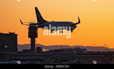 Richmond, British Columbia, Canada. 18th Feb, 2020. A Boeing 737-700 jet, belonging to WestJet Airlines (C-GUWJ), lands at sunset, Vancouver International Airport. Credit: Bayne Stanley/ZUMA Wire/Alamy Live News - Stock Photo
