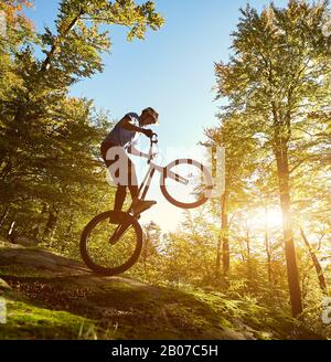 Professional sportsman cyclist balancing on back wheel on trial bicycle, male biker making acrobatic trick on the edge of big boulder in the forest on summer sunny evening - Stock Photo