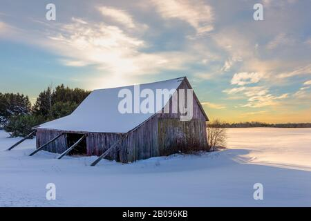 Weathered shed or barn in a snowy field in winter with the sun setting behind it.  Concepts could include nature, seasons, agriculture, others. - Stock Photo