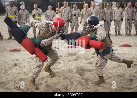 U.S. Marine Corps recruits with Delta Company, 1st Recruit Training Battalion, participate in Pugil Sticks training at Marine Corps Recruit Depot February 18, 2020 in San Diego, California. - Stock Photo