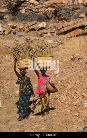 MALI, NEAR BANDIAGARA, DOGON COUNTRY, SONGHO DOGON VILLAGE, WOMEN CARRYING BASKETS WITH MILLET - Stock Photo