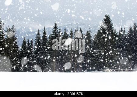 View from Gubalowka 1,126 m on Tatry mountains and forest in snowing day, Zakopane, Poalnd. Snowfall - Stock Photo