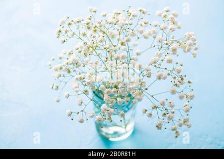 https://comps.canstockphoto.com/gypsophila-baby-breath-flowers-in-glass-stock-image_csp78341163.jpg