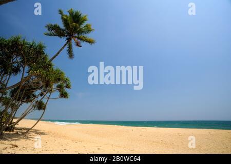 Sri Lanka, Tangalle beach - Stock Photo