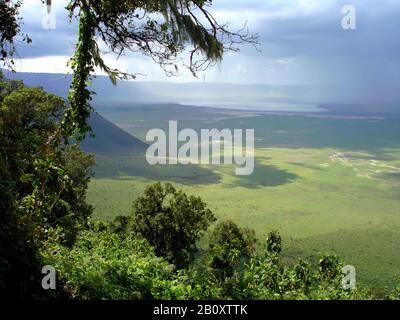 View from the rim at the Ngorongoro Crater, Tanzania, Ngorongoro National Park - Stock Photo