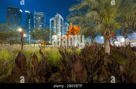 Green area with palm trees and flowers on an interchange on Sheikh Zayed Road overlooking high-rise buildings in Jumeirah Lakes Towers (JLT) at night, New Dubai, United Arab Emirates, - Stock Photo