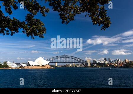 View from Mrs. Macquaries Point to the skyline with the Harbour Bridge and the Opera House, Sydney, Australia - Stock Photo