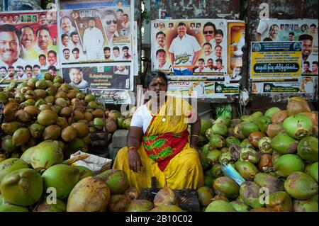 PONDICHERRY, INDIA - February 2020: A coconut vendor in the centre of the town - Stock Photo