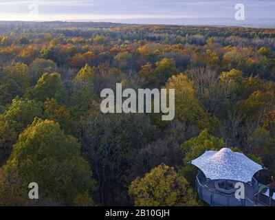 View over the Hainich from the treetop path in the National Park, Thuringia, Germany - Stock Photo