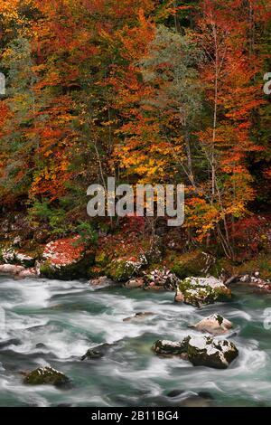 River Saalach, Lofer, Province of Salzburg, Austria, Europe - Stock Photo