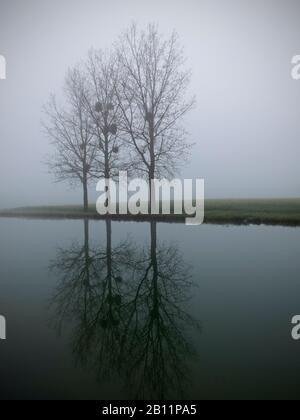 Fog, Saint-Usage, Canal de Bourgogne, Burgundy, France - Stock Photo