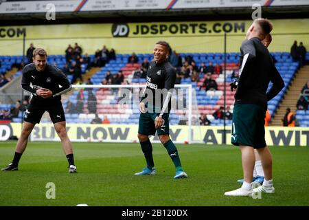Selhurst Park, London, UK. 22nd Feb, 2020. English Premier League Football, Crystal Palace versus Newcastle United; Dwight Gayle of Newcastle United during pre match warm up Credit: Action Plus Sports/Alamy Live News - Stock Photo