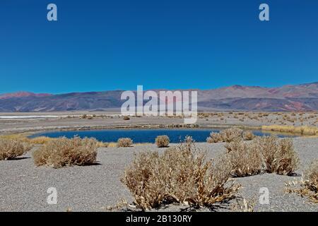 Ojos del Campo,Salar de Antofalla,Puna desert,Catamarca Province,Argentina,South America - Stock Photo