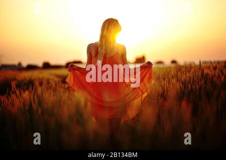 Woman with dress standing in the cornfield at sunset - Stock Photo