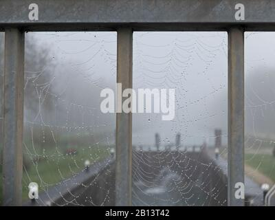 Mist,Saint-Usage,Canal de Bourgogne,Burgundy,France - Stock Photo