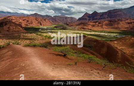The road from Cachi to San Antonio de los Cobres,in Puna region of Salta in northern Argentina - Stock Photo