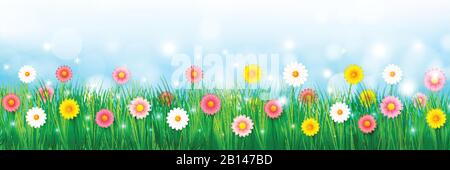 Vector illustration spring abstract background beautiful colorful flower, for a spring time vacation concept over a blue sky, with light blur bokeh an