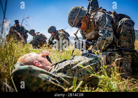 U.S. Marine Corps Lance Cpl. Jacob Hernandez, a rifleman with India Company, 3rd Battalion, 1st Marine Regiment, 1st Marine Division, applies a tourniquet to a simulated casualty as part of a casualty evacuation drill during the second day of the Brahma Bulls Individual Competition at Camp Horno, Marine Corps Base Camp Pendleton, California, April 24, 2019. The three-day competition is composed of a series of different challenges such as written examinations, live-fire ranges, and combat conditioning to test the Marines' combat effectiveness. (U.S. Marine Corps photo by Cpl. Dylan Chagnon) - Stock Photo