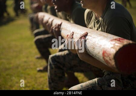 U.S. Marines with the Logistics Combat Element (LCE), Marine Rotational Force – Darwin (MRF-D), conduct log lunges during a field meet at Robertson Barracks, Darwin, Australia, July 22, 2019. The LCE Marines held the field meet to conduct physical training while providing the opportunity to build comradery through competition. (U.S. Marine Corps photo by Staff Sgt. Jordan E. Gilbert) - Stock Photo