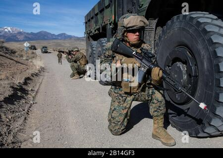 U.S. Marine Corps Lance Cpl. Caleb Estrada, right, a landing support specialist with 2nd Transportation Support Battalion, Combat Logistics Regiment 25, 2nd Marine Logistics Group, provides security for a convoy during improvised explosive device training at Luck Boy Pass Training Area, Marine Corps Mountain Warfare Training Center, Bridgeport, Calif., Feb. 9, 2018. Marines with CLR-25 took part in mountainous tactical convoy training designed to provide the Marines experience in IED recognition, navigation in mountainous terrain, enemy contact drills, and casualty treatment and evacuation. (U - Stock Photo