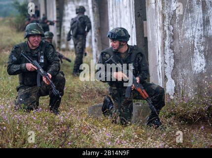 Bulgarian service members participate in a simulated raid with U.S. Marines assigned to Fleet Anti-terrorism Security Team Company, Europe (FASTEUR) during exercise Platinum Lion 2019 in Novo Selo Training Range, Bulgaria, July 14, 2019. Platinum Lion is a Bulgarian-hosted multinational maritime exercise held at the Novo Selo Training Range in Bulgaria that is designed to improve operational and tactical interoperability among participating units. (U.S. Navy photo by Mass Communication Specialist 1st Class Scott Bigley) - Stock Photo