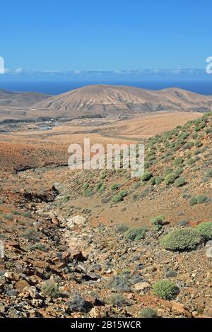 Mountain landscape of Fuerteventura, Spain. High viewpoint looking down valley towards volcanic mountains with Atlantic Ocean on horizon. Blue sky. - Stock Photo