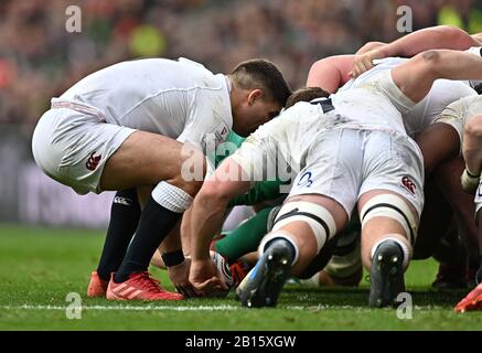 Twickenham, United Kingdom. 23rd Feb, 2020. Ben Youngs (England and Leicester Tigers) puts the ball unto the scrum. England V Ireland. Guiness six nations. Twickenham Stadium. Twickenham. London. UK. Credit Garry Bowden/Sport in Pictures/Alamy Live News. Credit: Sport In Pictures/Alamy Live News - Stock Photo