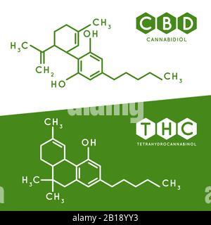 Thc and cbd formula. Cannabidiol and tetrahydrocannabinol molecule structure compound. Medical marijuana molecules vector illustration - Stock Photo