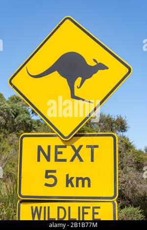 Kangaroo road sign in Great Otway National Park, Barwon South West Region, Victoria, Australia - Stock Photo