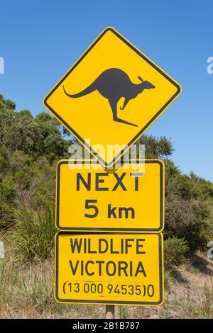 Kangaroo road sign in Great Otway National Park, Barwon South West Region, Victoria, Australia - Stock Photo
