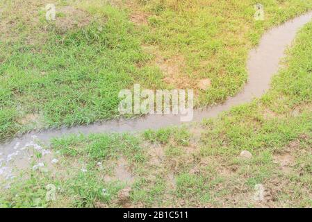 S curved creek with blooming wildflower and green grass in the meadow rural North Vietnam - Stock Photo