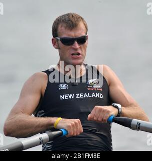 Shunyi, CHINA. NZL M1X,  Mahe DRYSDALE, moves away from the start in his heat of the men's single sculls at the 2008 Olympic Regatta,  Saturday, 09.08.2008  [Mandatory Credit: Peter SPURRIER, Intersport Images] - Stock Photo