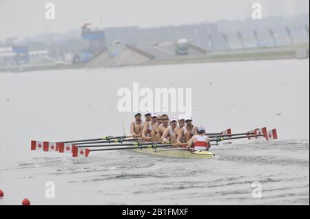 Shunyi, CHINA.  Start of a heat of the men's eights,   CAN M8+  move away from the start pontoon. 2008 Olympic Regatta, Shunyi Rowing Course. Monday. 11.08.2008  [Mandatory Credit: Peter SPURRIER, Intersport Images] - Stock Photo