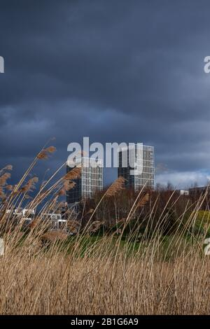 View of the East Village and the Queen Elizabeth Olympic Park, London, England, United Kingdom, Europe. - Stock Photo