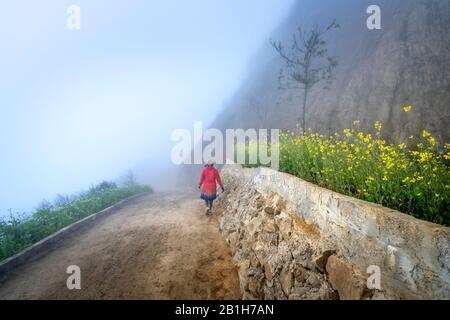 Ta Xua, Son La province, Vietnam - January 22, 2020: The H'mong ethnic woman walking on the village road in fog in Ta Xua, Son La province, Vietnam - Stock Photo