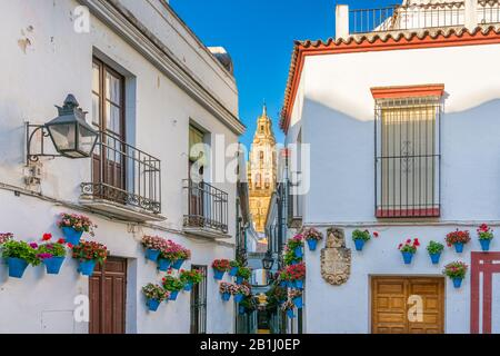 Scenic sight in the picturesque Cordoba jewish quarter with the bell tower of the Mosque Cathedral. Andalusia, Spain. - Stock Photo