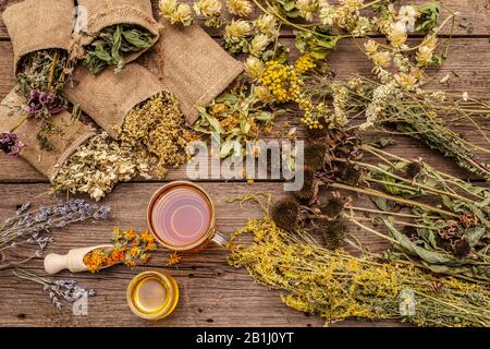 Tea with honey. Herbal harvest collection and bouquets of wild herbs. Alternative medicine. Natural pharmacy, self-care concept. Old wooden boards bac - Stock Photo