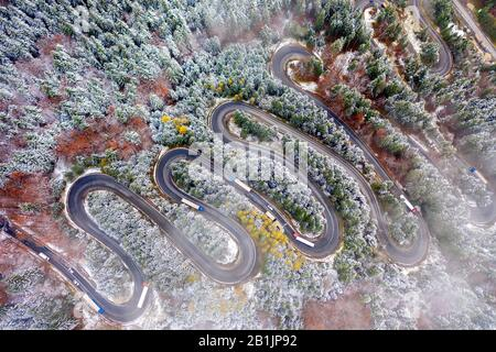 Aerial view of a winding mountain road passing through a fir trees forest. Winter with snow - Stock Photo