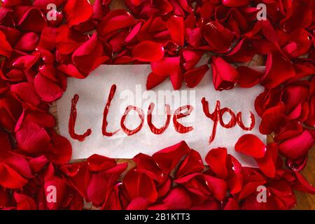 The text I love you surrounded with red rose petals, romantic concept top view valentines background - Stock Photo